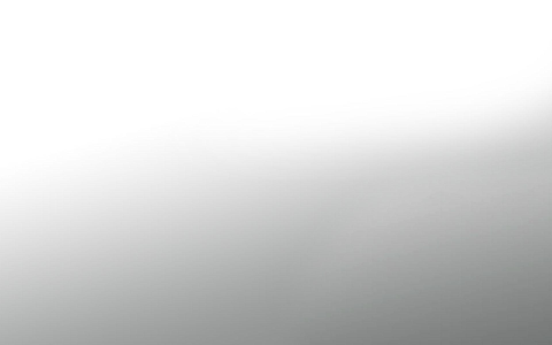 Цветовые сочетания остинок  Энциклопедия роз